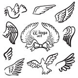 Wings. Set of design elements. Stock Photos