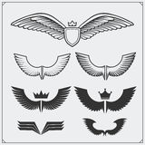 Wings set. Design elements. Vector illustration. Royalty Free Stock Photo