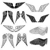 Wings set Stock Photos