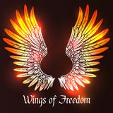 Wings Sketch Illustration Royalty Free Stock Photos