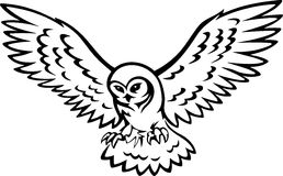 Wings tatoo Stock Photos