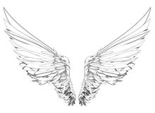 Wings. Vecto illustration on white background. Black and white. Wings.  illustration on white background. Black and white style Royalty Free Stock Photography