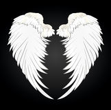 Wings. Vector illustration on black background. Black and white Stock Photo