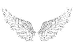Wings. Vector illustration on white background. Black and white. Style Royalty Free Stock Photos