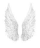 Wings. Vector illustration on white background. Black and white. Style Royalty Free Stock Photography