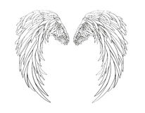 Wings. Vector illustration on white background. Black and white style Stock Photo