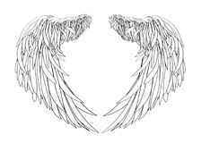 Wings. Vector illustration on white background. Black and white Royalty Free Stock Image