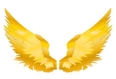 Wings. Vector illustration on white background. Golden color.  stock illustration