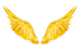 Wings. Vector illustration on white background. Golden metal.  Stock Image