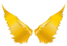 Wings. Vector illustration on white background. Golden metal.  Royalty Free Stock Images