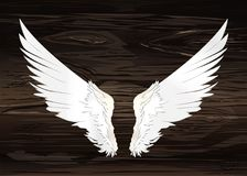 Wings. Vector illustration on wooden background. Black and white. Style Royalty Free Stock Photos
