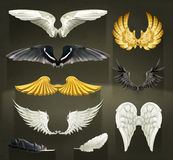 Wings vector illustrations Royalty Free Stock Photo