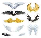Wings vector illustrations Stock Image