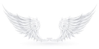 Wings White Royalty Free Stock Image