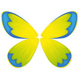 The wings for your butterfly Royalty Free Stock Photography