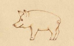 świnia Fotografia Royalty Free