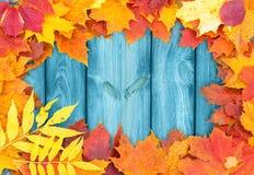 Winieta jesień liście Zdjęcie Royalty Free