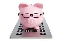 Świniowaty bank i kalkulator Obraz Stock