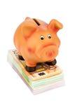świnka banknotów bankowych Obraz Royalty Free