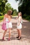Winkelende meisjes Royalty-vrije Stock Fotografie