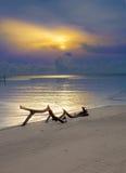 Winkelhaak op het strand dichtbij het overzees bij mooie zonsopgangschemer Royalty-vrije Stock Afbeeldingen