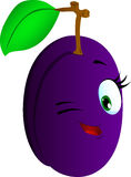 Winking plum Royalty Free Stock Photos
