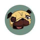 Winking pug. Cartoon winking pug illustration. Can be used for fashion print design, textile design, fashion graphic, t-shirt, kids wear Royalty Free Stock Image