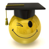 Winking smiley graduate Royalty Free Stock Photo