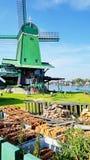 Winmills em Zaanse Schans, os Países Baixos Fotografia de Stock