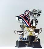 Winnende trofeeën Royalty-vrije Stock Foto