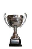 Winnende trofee Stock Afbeeldingen