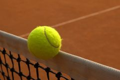 Winner?. Tennis ball on border area Royalty Free Stock Photos