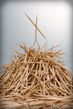 Winner. Toothpick stands on the mount Stock Photography
