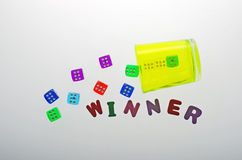 The winner is always alone. Royalty Free Stock Images