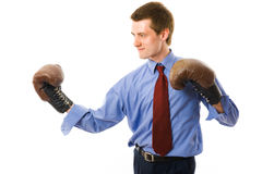 The winner. Business man boxs. Royalty Free Stock Photography