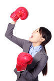 Winner and business success concept. Winning business woman celebrating wearing boxing gloves and business suit. Winner and business success concept isolated on Stock Photo
