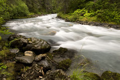 Winner Creek, Girdwood, Alaska. The rushing, Winner Creek, near Girdwood Alaska royalty free stock photo