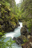 Winner Creek Gorge. And rushing Winner Creek near Girdwood, Alaska royalty free stock photos