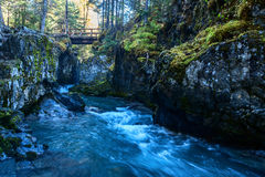Winner Creek Gorge stock images