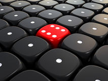Winner dice Stock Photo