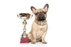 Winner dog Royalty Free Stock Photography