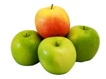 Winner green Apple on group of red apple Royalty Free Stock Image
