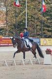 The Winner Inessa Merculova on horse named Mister X. International Dressage in International Horse Park Rus Vivat, Russia! Orlovo, Moscow region. Final day 22 Royalty Free Stock Photo