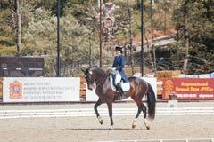The Winner Inessa Merculova on horse named Mister. International Dressage in International Horse Park Rus Vivat, Russia! Orlovo, Moscow region. Final day 22 Royalty Free Stock Image