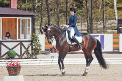 The Winner Inessa Merculova on horse named Mister X Stock Image