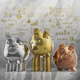 Winner piggy bank Royalty Free Stock Image