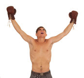 Winner young man with boxing gloves Royalty Free Stock Photo