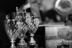 Winners' cups Stock Images