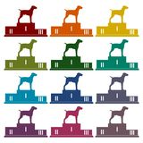 Winners of Dog competition at the podium icon set Royalty Free Stock Images