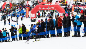 Winners Ebba Andersson, Solleftea Skiing IF, at the finish in the ski race Fjalltoppsloppet mountain top race 35 km in Bruksvall stock image